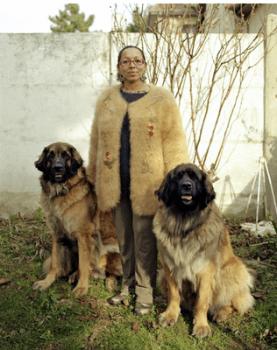 шерсть кавказской овчарки