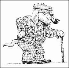 собака в старости
